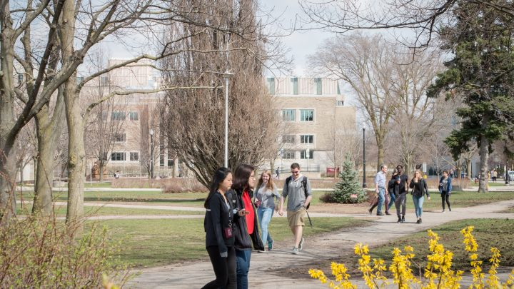 Students walk on campus in the Spring, photograph of students is framed by nature.
