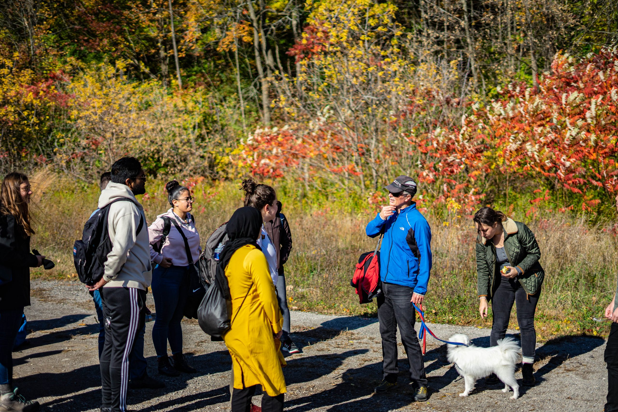Students having a class discussion outdoors in the Fall. Trees are in the background with changing leaf colours.