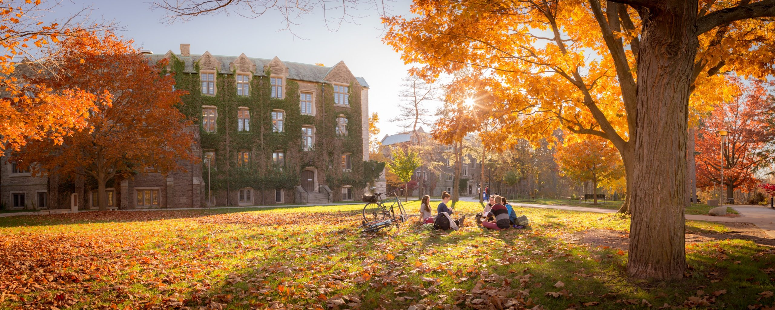 Area behind University Hall in the Fall, students sit under a tree.